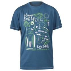 D555 FERNSBY SURFING BORN TO RIDE  PURE COTTON  TEE SHIRT TEAL  3 - 6XL