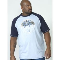 D555 CREW NECK TEE WITH CONTRAST SLEEVE AND NYC PRINT BLUE MARL