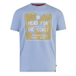 D555 KING SIZE MENS SUMMER PRINT T-SHIRT HEAD TO THE COAST ARIZONA  LIGHT BLUE 3 - 6XL