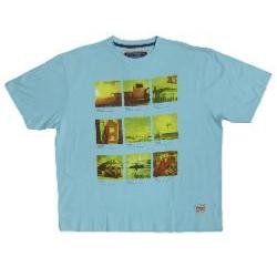 SALE - ED BAXTER Natural Cotton Tee HICKSVILLE  3 - 4XL