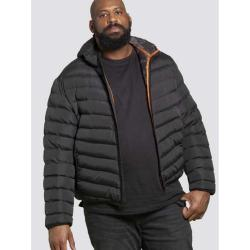 D555 PUFFER JACKET WITH HOOD BLACK CLARK 3 - 8XL