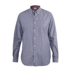 JUST ARRIVED - D555 LONG SLEEVE COTTON STRIPE SHIRT WITH BUTTON DOWN COLLAR FRANKSTON GREY  3 - 6XL