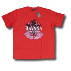 ESPIONAGE Printed Summer Tee 'HAVANA'' RED